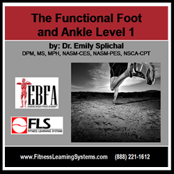 Functional Foot and Ankle: Level 1 Image